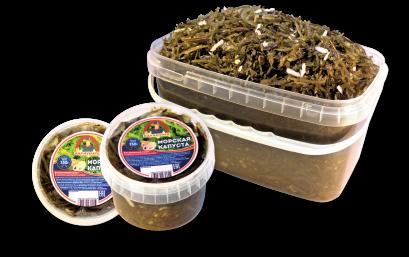 Морская капуста салат «Витаминный»